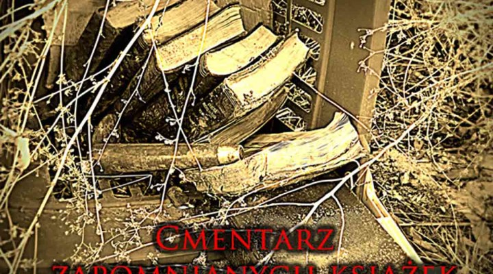 http://magicznyswiatksiazki.pl/grudzien-na-cmentarzu-zapomnianych-ksiazek-2/