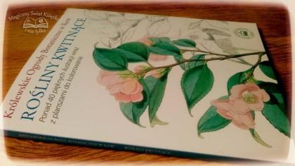 Rośliny kwitnące (1)