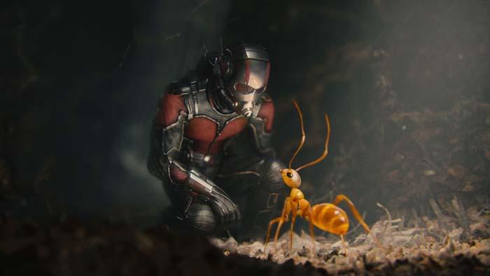 Ant-Man (7)