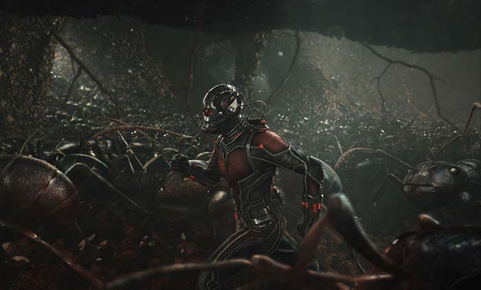 Ant-Man (8)