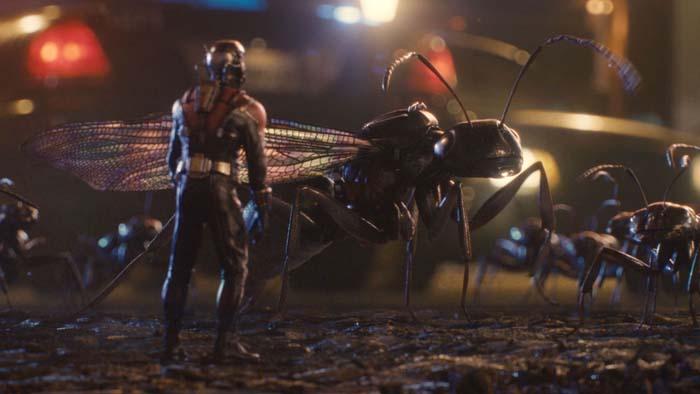 Ant-Man (9)