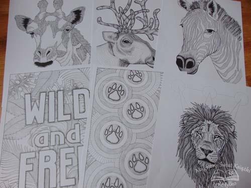 10 posterów - Zwierzęta (4)