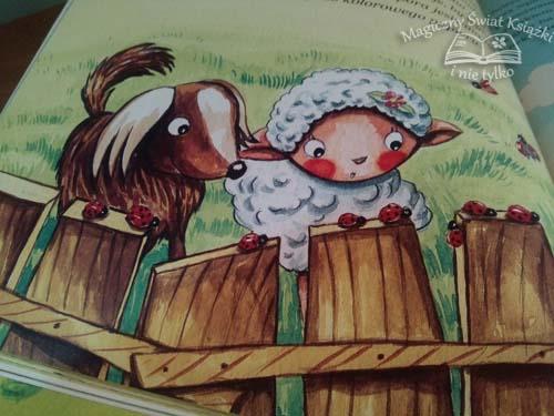 Jak pies z owieczką (3)
