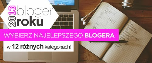 Bloger roku 2013
