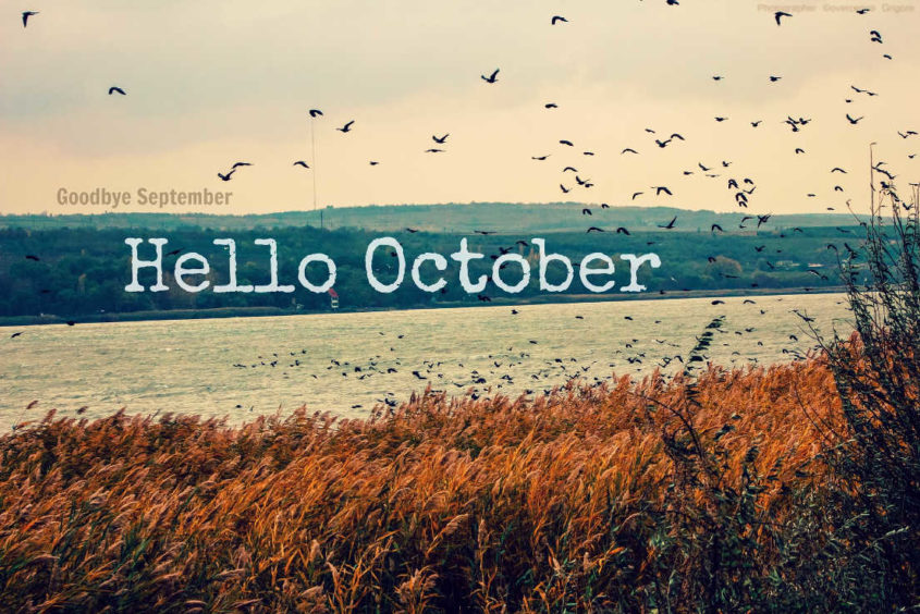 Captivating Hello October Background For Windows